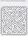 Ages 5-6-7 My Book of Mazes - Animals_41