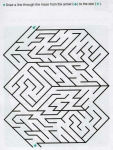 Ages 5-6-7 My Book of Mazes - Animals_45