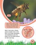 [Ebook] Bee_16